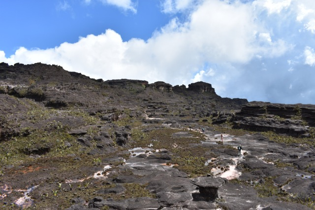 trekking - monte roraima - mochileros