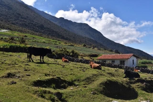 qué hacer en Mérida, Venezuela