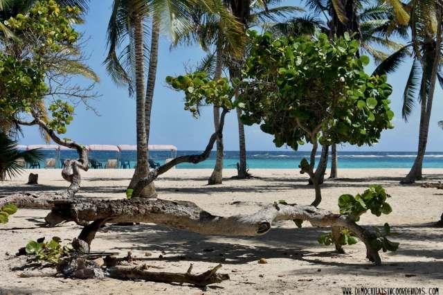 parque nacional morrocoy - mejor playa de venezuela